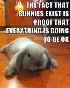 BunniesExist
