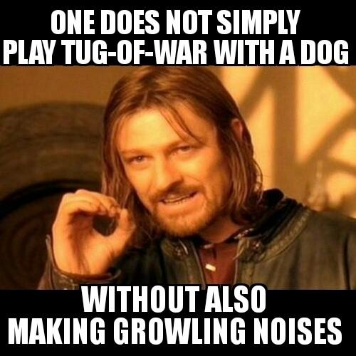 TugWarDog