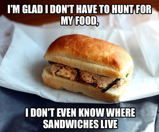 SandwichHunt