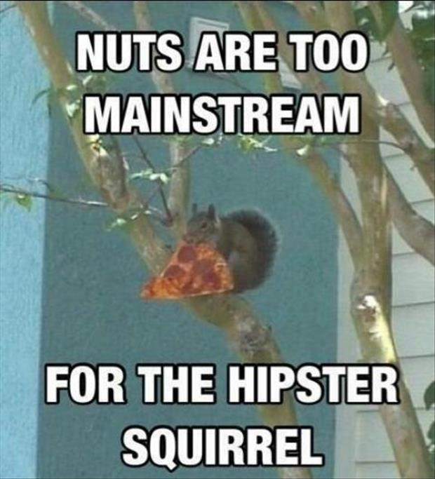 SquirrelPizza