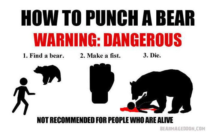 BearPunch